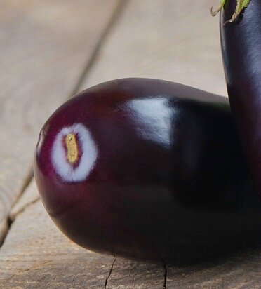 aubergine_legume_decouvrir