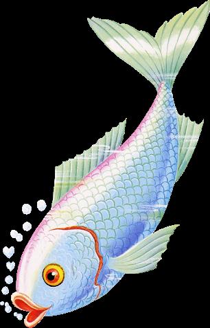 tube poissons 3
