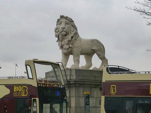 london eye lion
