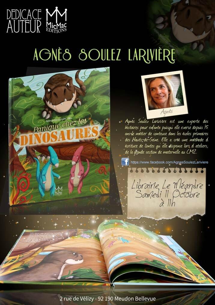 Dédicace samedi 11 octobre 2014 à 11h à la librairie Le Méandre