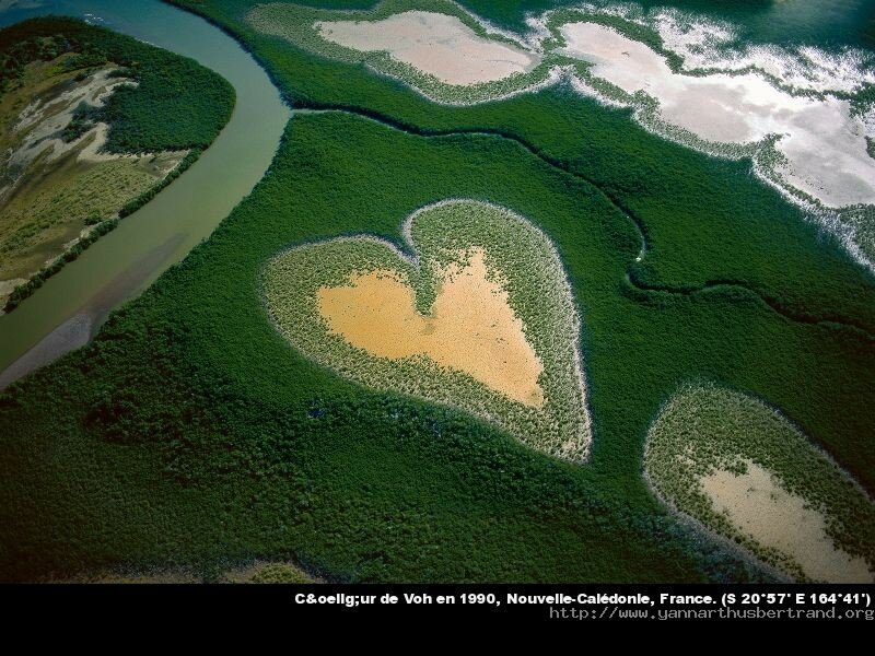 Un humain de la plan te terre yann arthus bertrand du for Fond ecran photo yann arthus bertrand