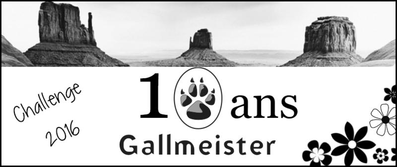 logo gallmeister 10 ans