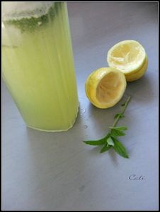 Lemon Mint 002