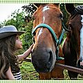 Promenade dans la belle région de iron hill et chevaux coquins - walk in the beautiful iron hill area and rascally horses