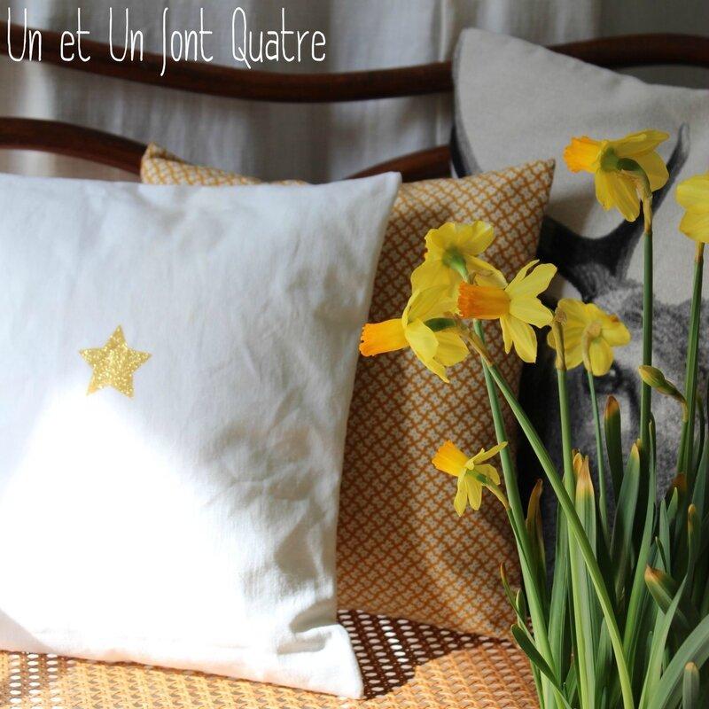 Coussin étoile dorée (1)