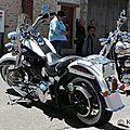 Harley 229