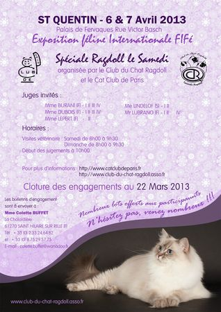 chat saint quentin