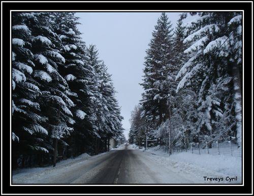 2008 12 01 La Route des Balays avec de beau sapin enneigés