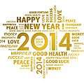 Bonne annee 2014 !!