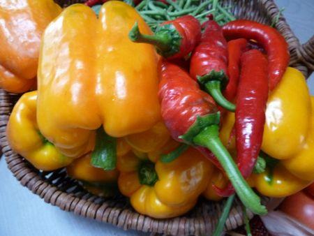 18-légumes variés (4)