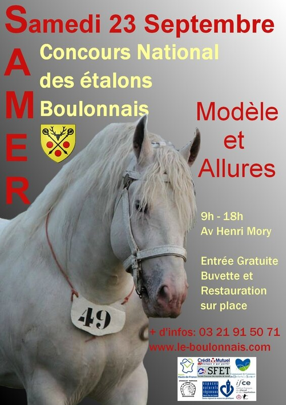 Affiche National Etalon 2017
