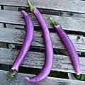 Tatinettes fondantes aux aubergines chinoises