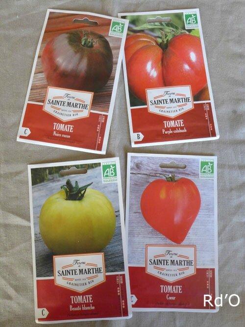 semis-tomates-blog-02
