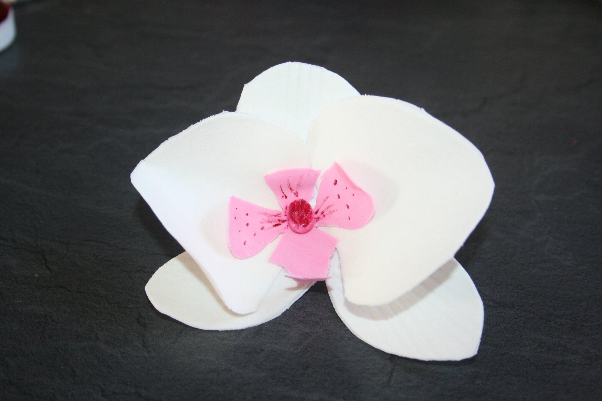 Préférence mes d'orchidées en pate à sucre - la manie des gateaux WS33