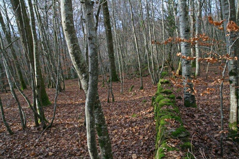 Anzème - Décembre 2009