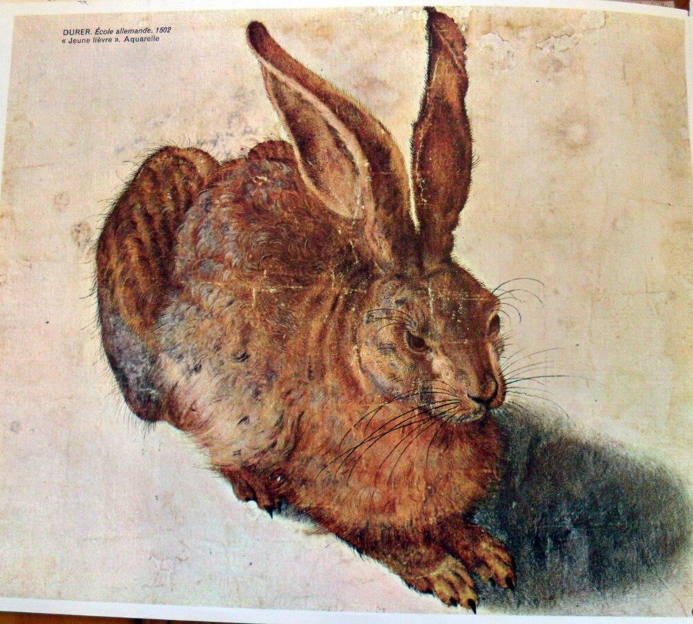 STAGE DE PRINTEMPS : Le Lièvre de Pâques