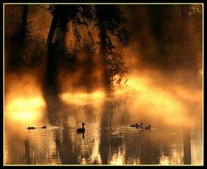 At_dawn___Prorok_Moisey