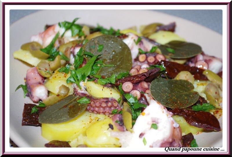 salade de poulpe-176