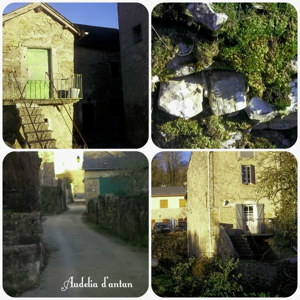 collagecevennes3