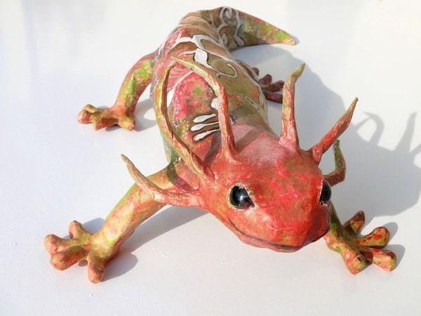axolotl1