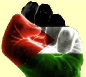 Palestine en lutte