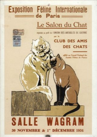 Affiches chats (2)
