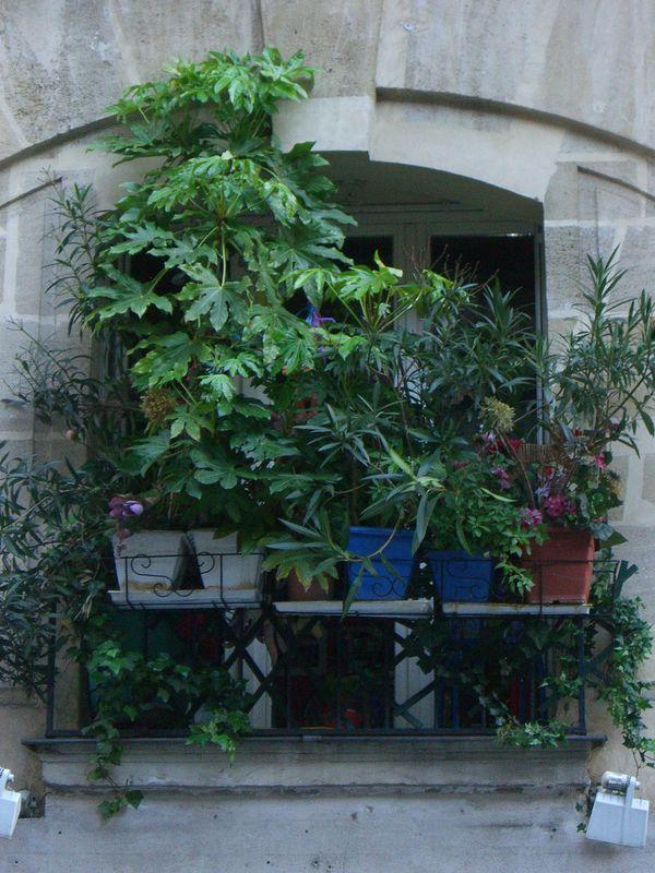Paris, été 2008