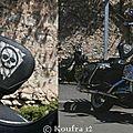 Harley 008-P