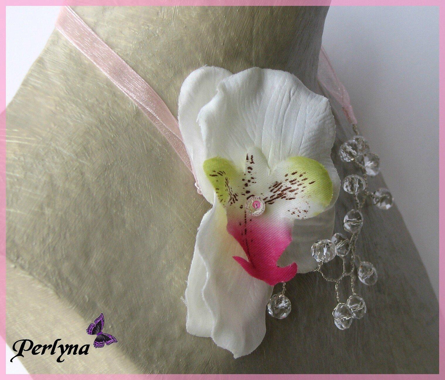 orchidée 007