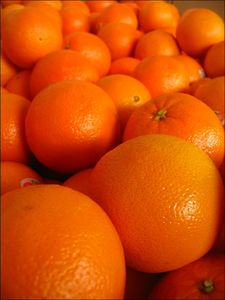 des_oranges_plein_d_oranges_de_couleur_orange_189
