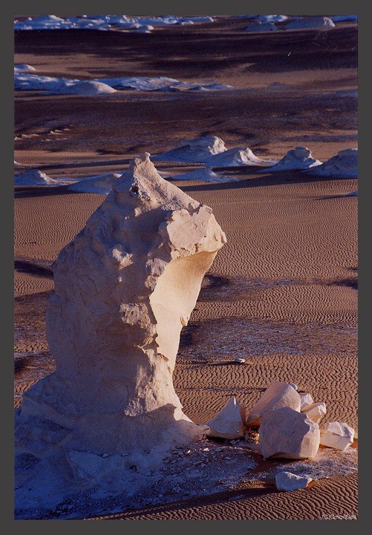 desertblanc24