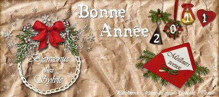 Banni_re_Nouvel_An_2011