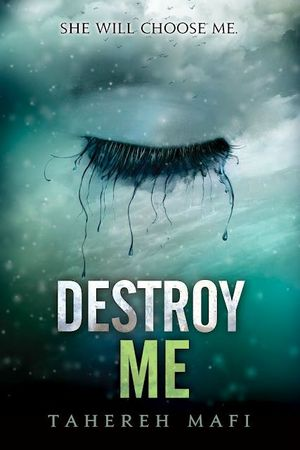 Destroy-Me