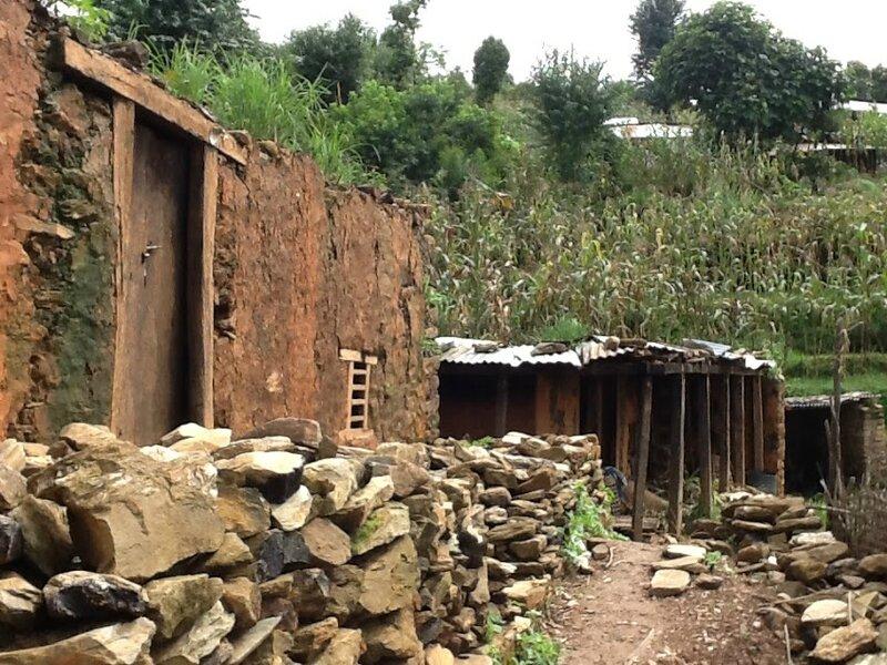 Tanjomane après le séisme (11)