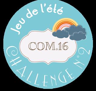 macaron-jeu-ete-2014-challenge-2-318x300
