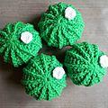 Lot de 4 cactus pour jongler #cmv025