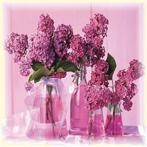 Flora_Press_Les_lilas_53889