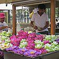 Sri lanka, suite et fin