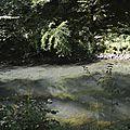 _DSC0404