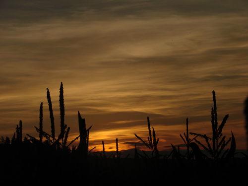 2008 08 27 Coucher de soleil