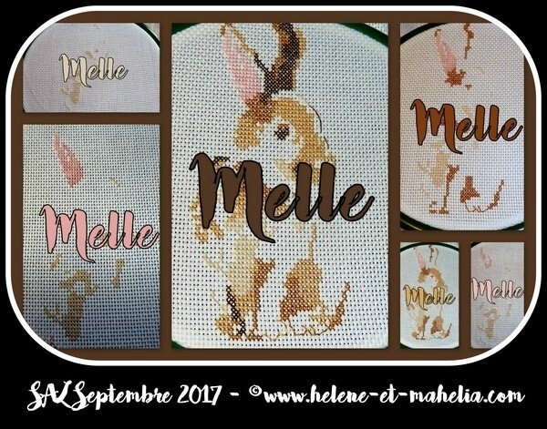 melle_salsept17_col3