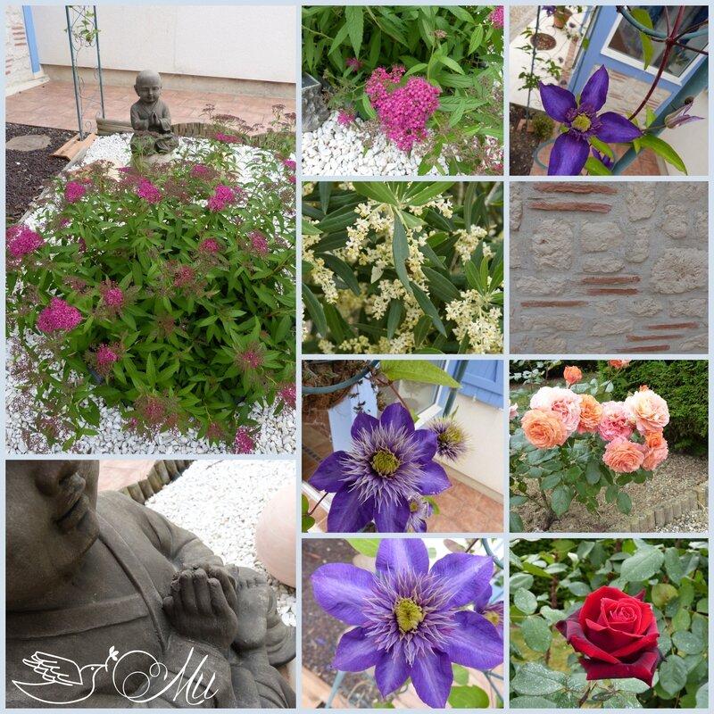 fleurs 30 05 15
