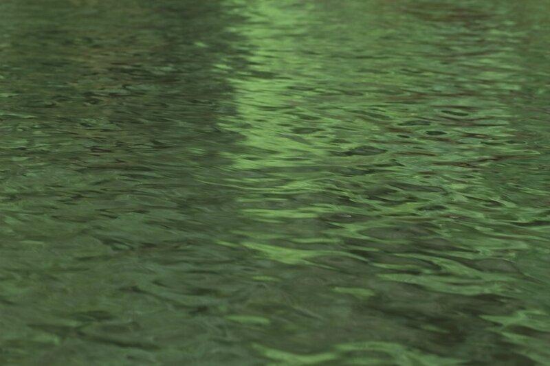 Fleuve Sinnamary