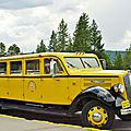 The Yellowstone N.P. White Buses