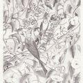 crayon (24)