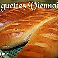 ~~baguettes viennoises ~~