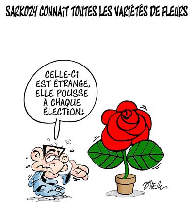 Sarkozy connaît toutes les variétés de fleurs
