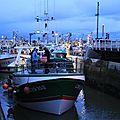 Port en bessin retour de la pêche à la coquille