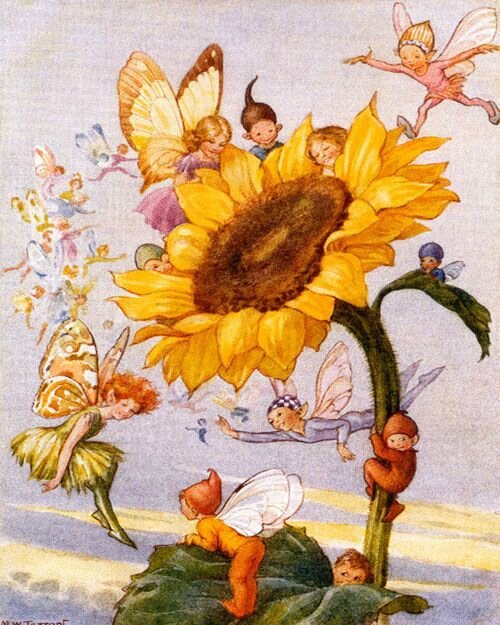 Margaret Tarrant sunflower-fairies
