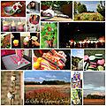 proposé par Vacances en Bretagne, à Paris et sous le soleil! - le coffre de Scrat et Gloewen, couture, lecture, DIY, illustrations...